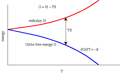 thermodynamic relationship between energy temperature and entropy